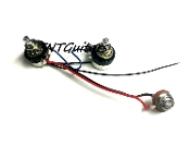 1V1T One Pickup Wiring Harness ~ Sealed Pots